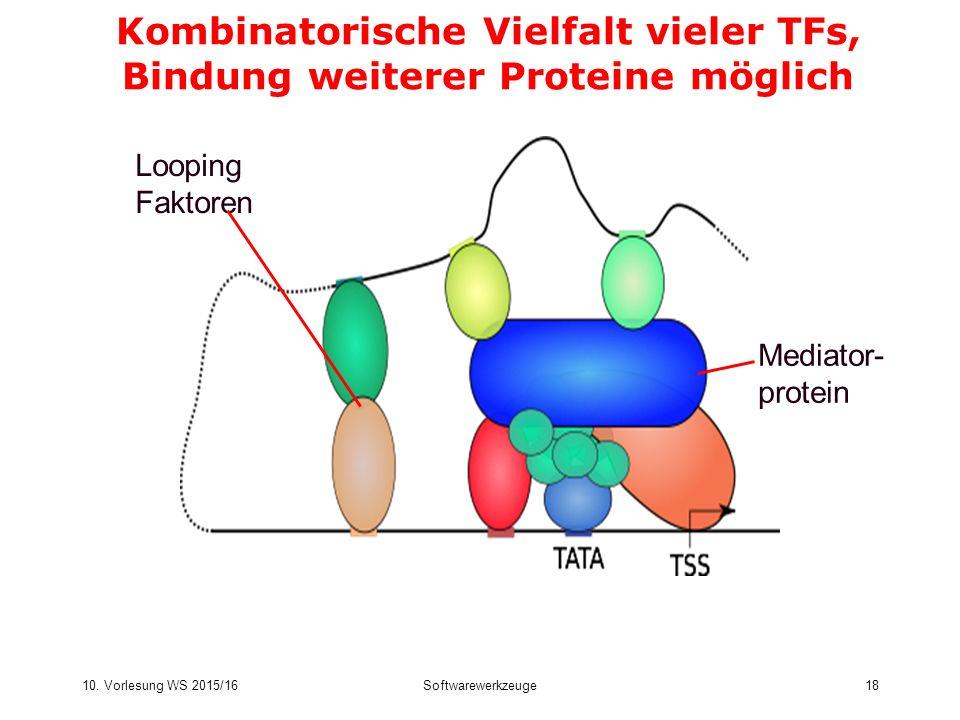 10. Vorlesung WS 2015/16Softwarewerkzeuge18 Kombinatorische Vielfalt vieler TFs, Bindung weiterer Proteine möglich Mediator- protein Looping Faktoren
