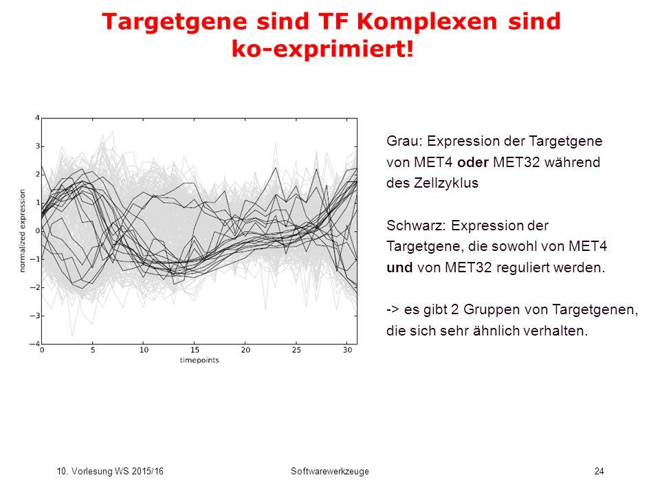 10. Vorlesung WS 2015/16Softwarewerkzeuge24 Targetgene sind TF Komplexen sind ko-exprimiert! Grau: Expression der Targetgene von MET4 oder MET32 währe