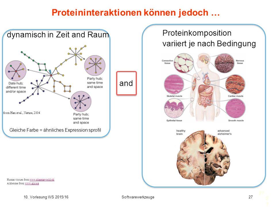 10. Vorlesung WS 2015/16Softwarewerkzeuge27 27 Proteininteraktionen können jedoch … from Han et al., Nature, 2004 Gleiche Farbe = ähnliches Expression
