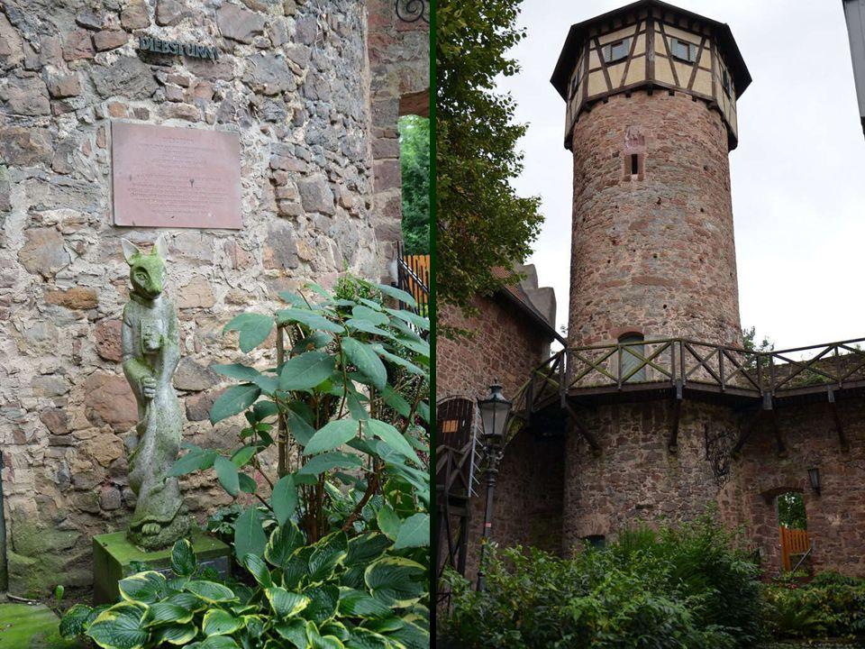 Der Diebsturm ist der größte erhalten gebliebene Turm der Michelstädter Stadtmauer. Er steht unmittelbar neben dem Kellereihof, dem ältesten Teil der