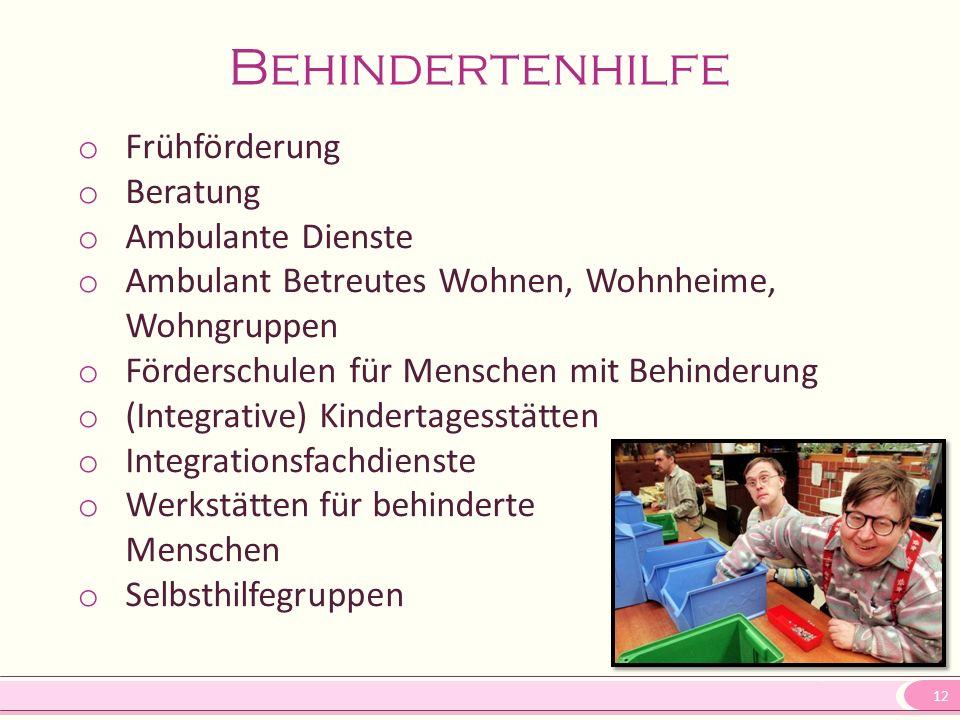12 Behindertenhilfe o Frühförderung o Beratung o Ambulante Dienste o Ambulant Betreutes Wohnen, Wohnheime, Wohngruppen o Förderschulen für Menschen mi