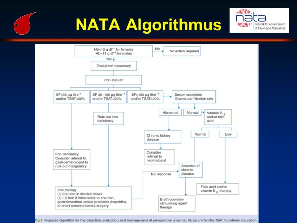 NATA Algorithmus