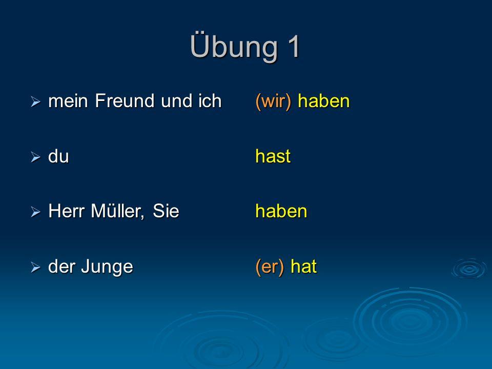 Übung 1  mein Freund und ich  du  Herr Müller, Sie  der Junge (wir) haben hasthaben (er) hat