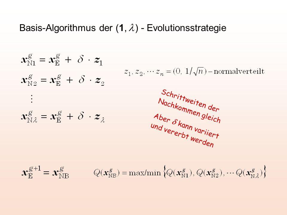 Basis-Algorithmus der (1,  ) - Evolutionsstrategie Schrittweiten der Nachkommen gleich Aber  kann variiert und vererbt werden
