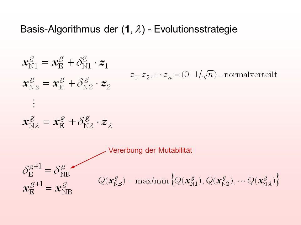 Basis-Algorithmus der (1,  ) - Evolutionsstrategie Vererbung der Mutabilität