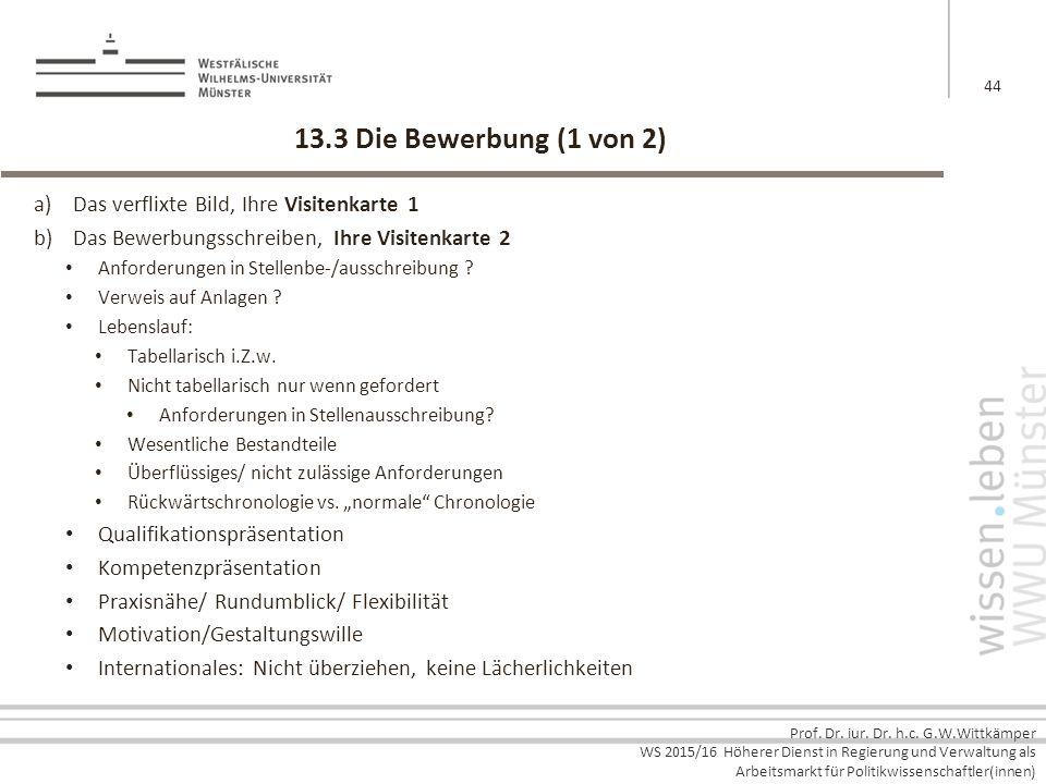 Prof. Dr. iur. Dr. h.c. G.W.Wittkämper WS 2015/16 Höherer Dienst in Regierung und Verwaltung als Arbeitsmarkt für Politikwissenschaftler(innen) 13.3 D