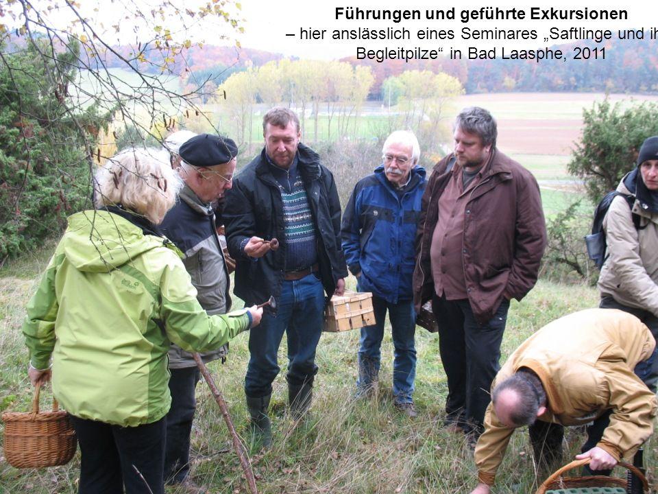 """Führungen und geführte Exkursionen – hier anslässlich eines Seminares """"Saftlinge und ihre Begleitpilze"""" in Bad Laasphe, 2011"""