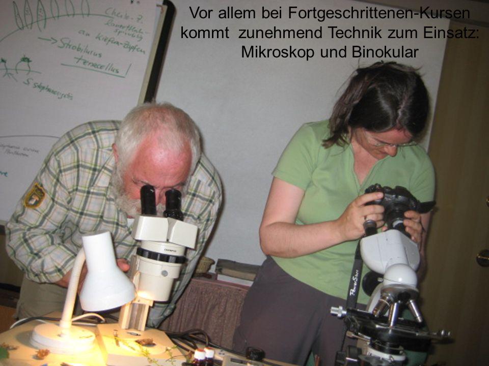 Vor allem bei Fortgeschrittenen-Kursen kommt zunehmend Technik zum Einsatz: Mikroskop und Binokular