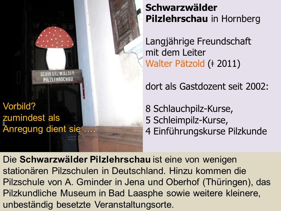 Schwarzwälder Pilzlehrschau in Hornberg Langjährige Freundschaft mit dem Leiter Walter Pätzold ( ǂ 2011) dort als Gastdozent seit 2002: 8 Schlauchpilz