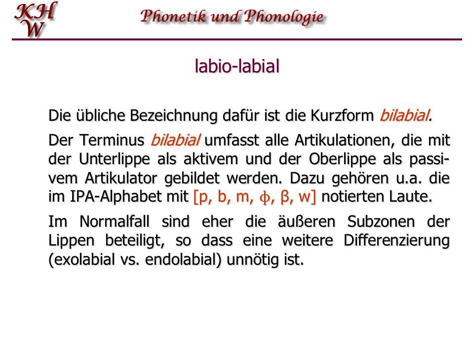 labio-labial Die übliche Bezeichnung dafür ist die Kurzform bilabial. Der Terminus bilabial umfasst alle Artikulationen, die mit der Unterlippe als ak