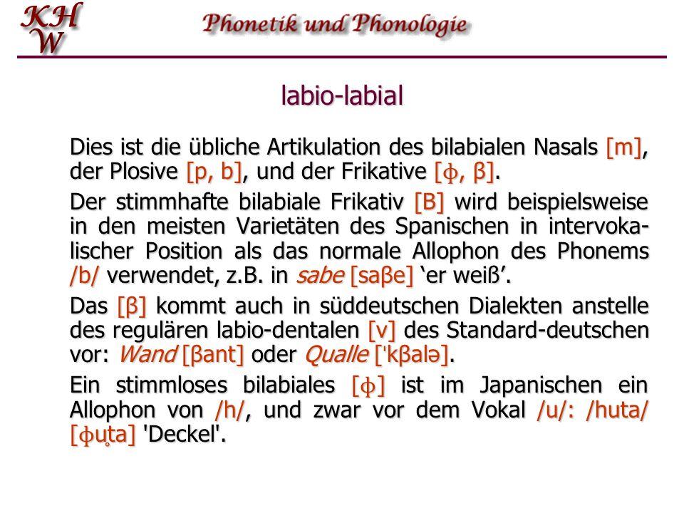 labio-labial Dies ist die übliche Artikulation des bilabialen Nasals [m], der Plosive [p, b], und der Frikative [ ɸ, β]. Der stimmhafte bilabiale Frik