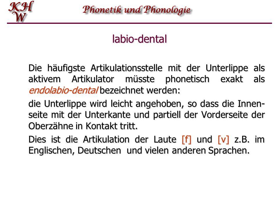 labio-dental Die häufigste Artikulationsstelle mit der Unterlippe als aktivem Artikulator müsste phonetisch exakt als endolabio-dental bezeichnet werd