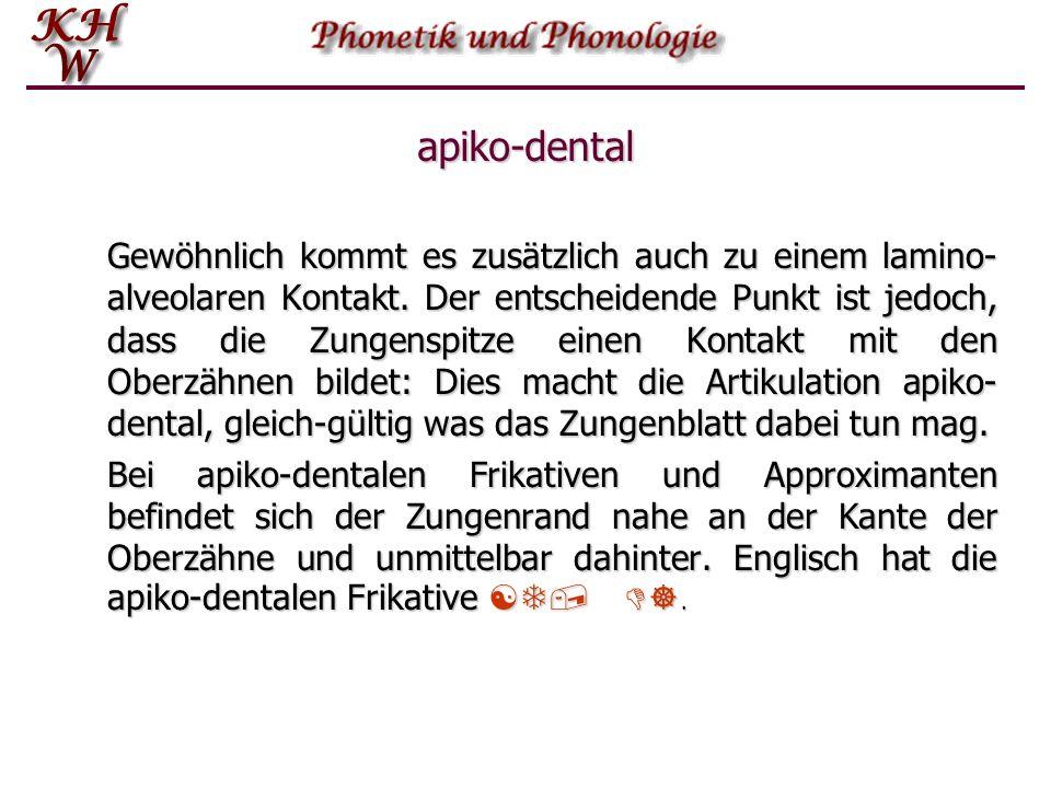 apiko-dental Gewöhnlich kommt es zusätzlich auch zu einem lamino- alveolaren Kontakt. Der entscheidende Punkt ist jedoch, dass die Zungenspitze einen
