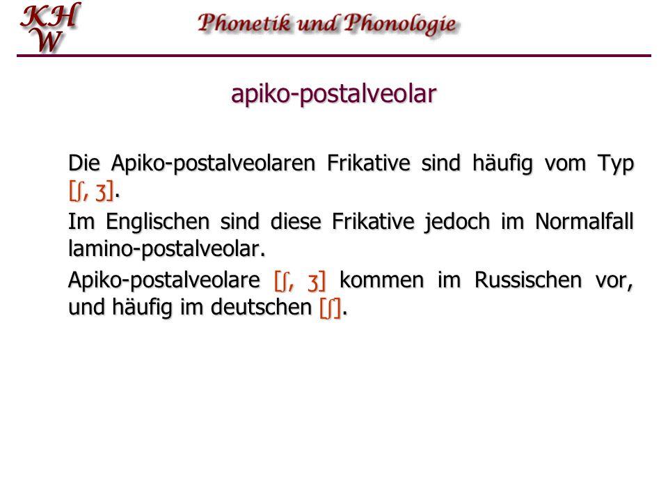 apiko-postalveolar Die Apiko-postalveolaren Frikative sind häufig vom Typ [ ʃ, ʒ]. Im Englischen sind diese Frikative jedoch im Normalfall lamino-post