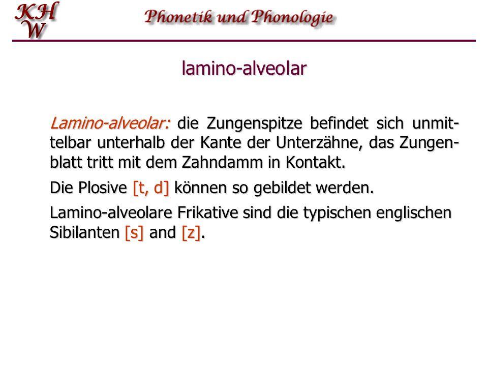 lamino-alveolar Lamino ‑ alveolar: die Zungenspitze befindet sich unmit- telbar unterhalb der Kante der Unterzähne, das Zungen- blatt tritt mit dem Za