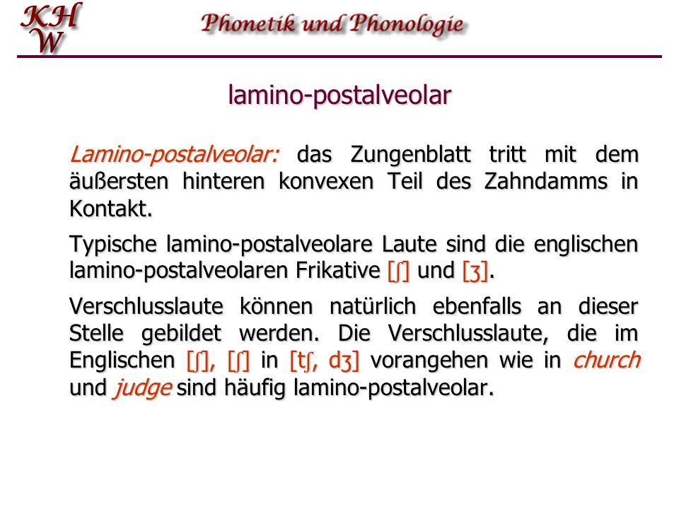 lamino-postalveolar Lamino-postalveolar: das Zungenblatt tritt mit dem äußersten hinteren konvexen Teil des Zahndamms in Kontakt. Typische lamino-post