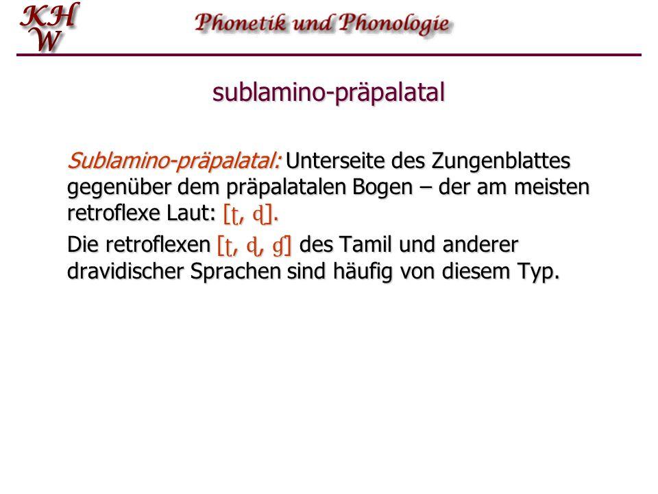 sublamino-präpalatal Sublamino ‑ präpalatal: Unterseite des Zungenblattes gegenüber dem präpalatalen Bogen – der am meisten retroflexe Laut: [ ʈ, ɖ ].