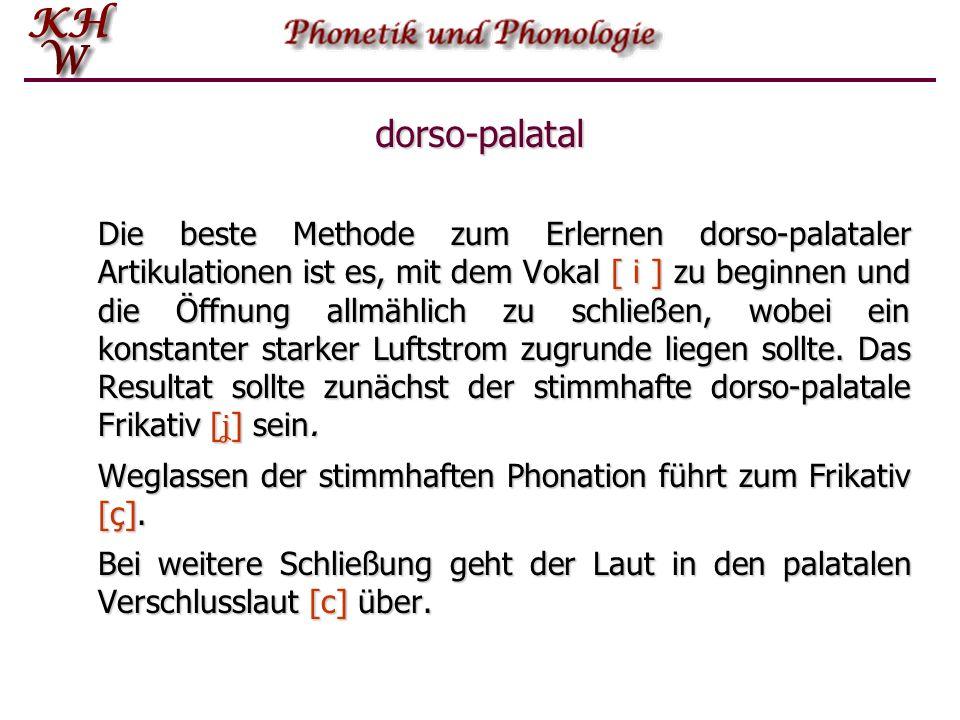 dorso-palatal Die beste Methode zum Erlernen dorso-palataler Artikulationen ist es, mit dem Vokal [ i ] zu beginnen und die Öffnung allmählich zu schl