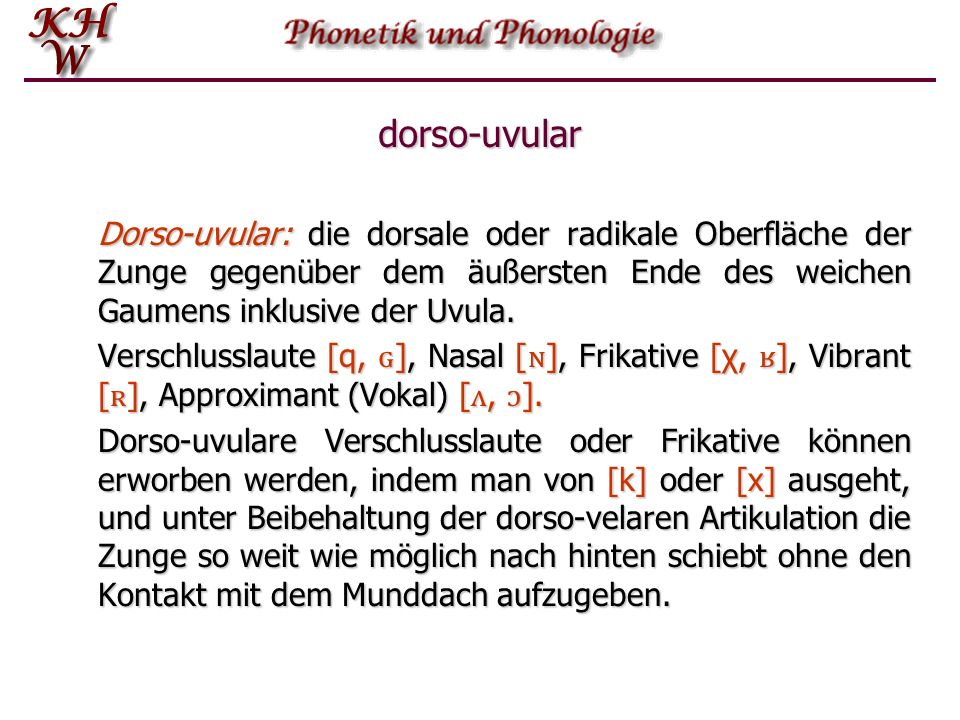 dorso-uvular Dorso ‑ uvular: die dorsale oder radikale Oberfläche der Zunge gegenüber dem äußersten Ende des weichen Gaumens inklusive der Uvula. Vers