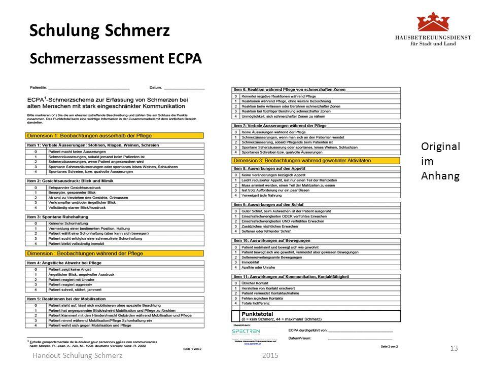 Schulung Schmerz Schmerzassessment ECPA 2015 Original im Anhang 13 Handout Schulung Schmerz