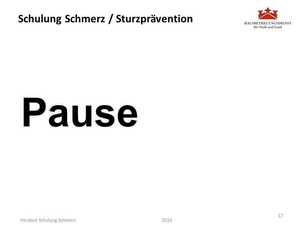 Schulung Schmerz / Sturzprävention Pause 2015 17 Handout Schulung Schmerz