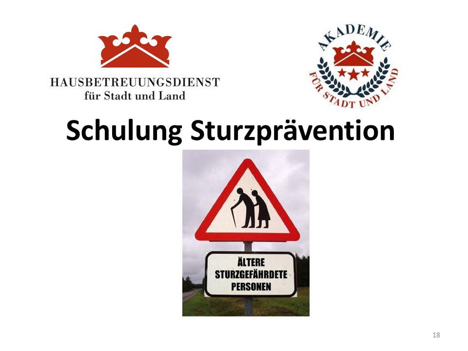 Schulung Sturzprävention 18
