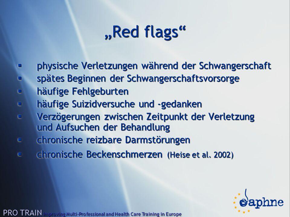 """""""Red flags""""  physische Verletzungen während der Schwangerschaft  spätes Beginnen der Schwangerschaftsvorsorge  häufige Fehlgeburten  häufige Suizi"""