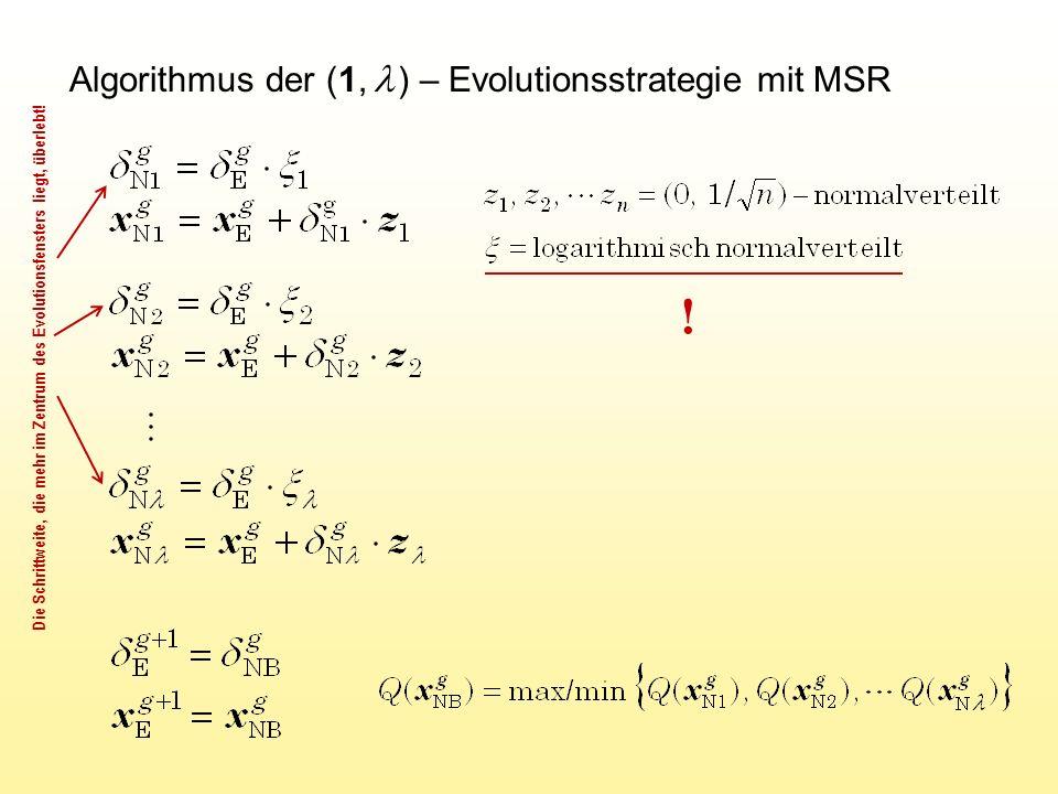 Algorithmus der (1,  ) – Evolutionsstrategie mit MSR .