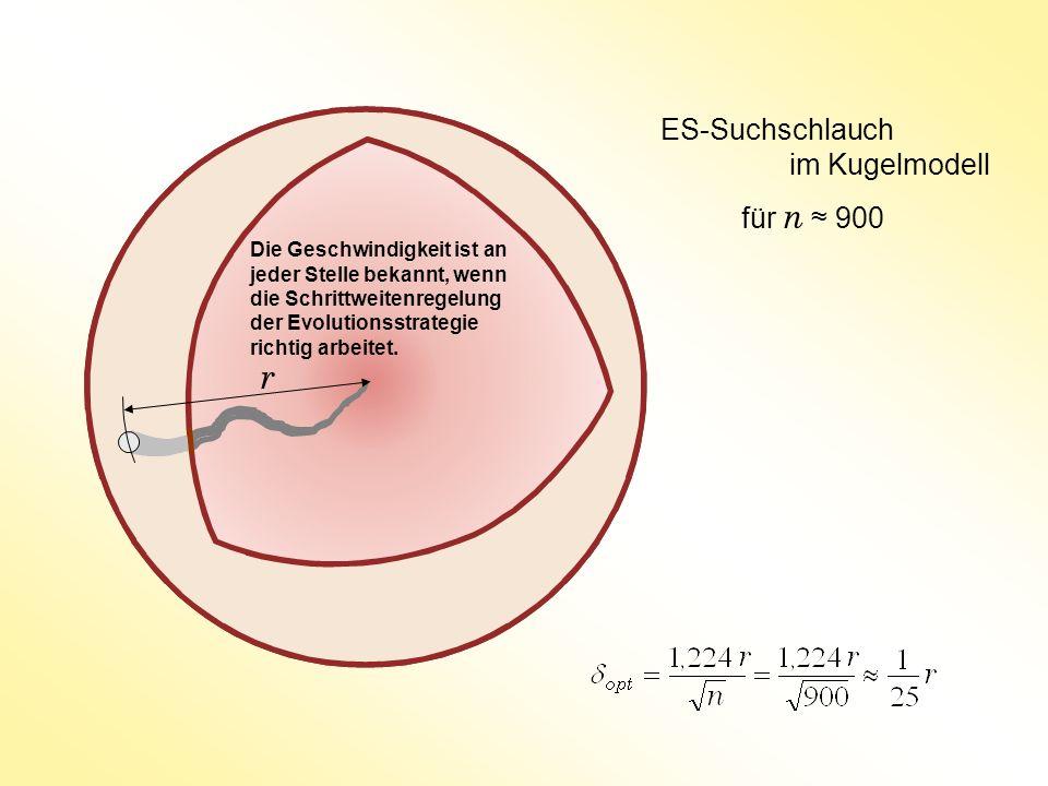 ES-Suchschlauch im Kugelmodell für n ≈ 900 r Die Geschwindigkeit ist an jeder Stelle bekannt, wenn die Schrittweitenregelung der Evolutionsstrategie richtig arbeitet.