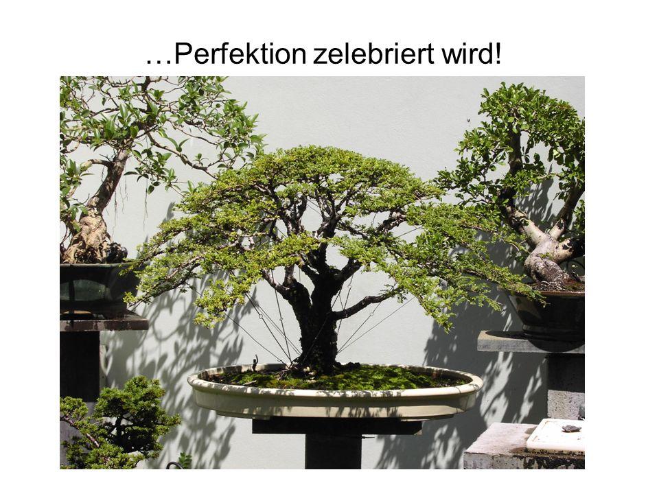 …Perfektion zelebriert wird!