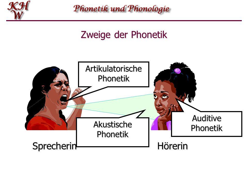 Zweige der Phonetik SprecherinHörerin Lautübertragung Lautproduktion Lautwahrnehmung ArtikulatorischePhonetik AkustischePhonetik AuditivePhonetik
