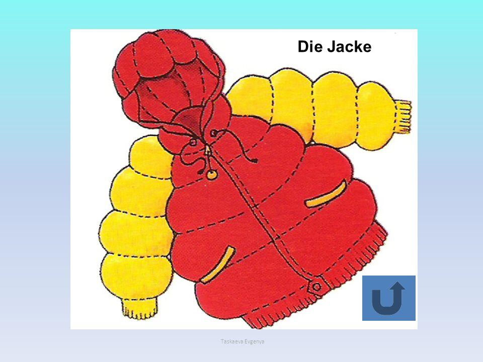 Der Hutплатье Die Hose Die Schuhe Die Stiefel туфли Die Bluse пальто шапка юбка костюм Die Mütze Das Kleidкуртка Das Hemd Der Mantel шляпа Die Jacke брюки Der Anzug сапоги Der Rock блузка рубашка Taskaeva Evgenya Die Schuhe