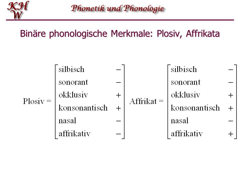 Plosive – Affrikaten – Frikative – Nasale – Liquide – Halbvokale – Vokale silbischsonorantokklusivkonsonantnasalaffrikativ Plosiv Affrikate Frikativ N