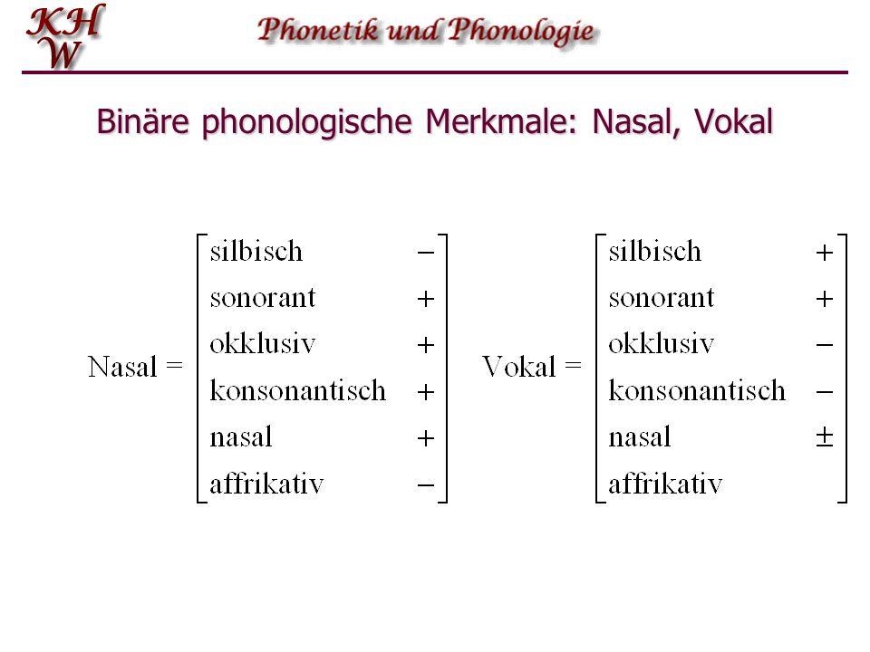 Binäre phonologische Merkmale: Plosiv, Affrikata