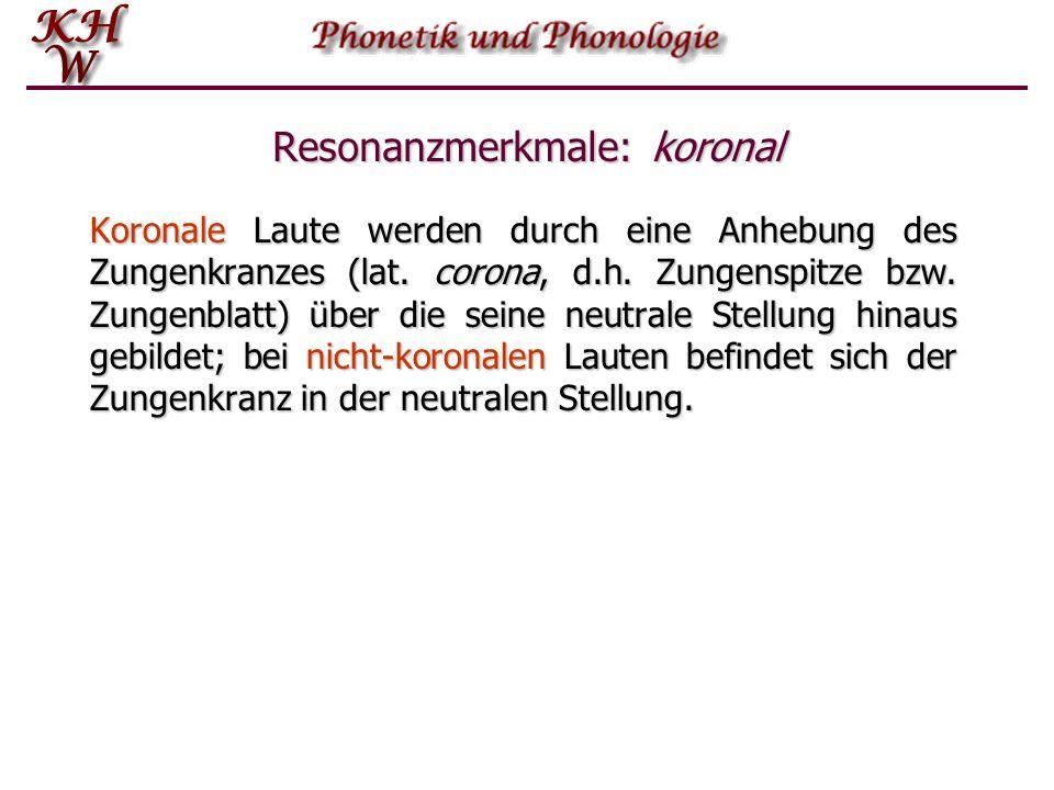 """Resonanz-Merkmale Zunächst wird mithilfe der Merkmale """"koronal- nicht-koronal"""" und """"anterior-nicht-anterior"""" eine vierfache Unterteilung vorgenommen."""