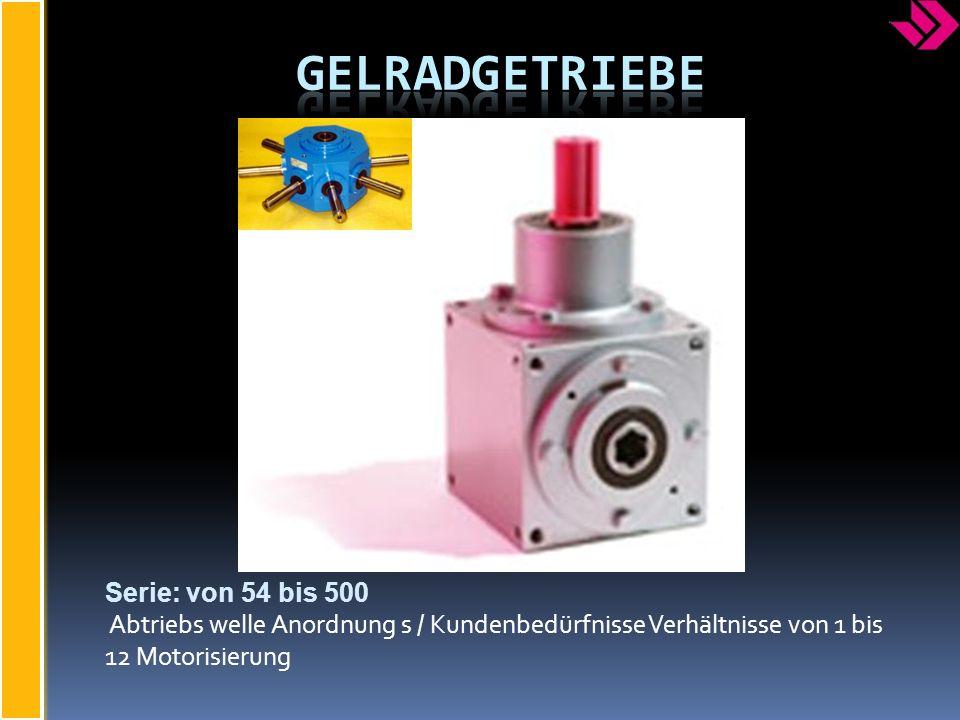 Serie: von 54 bis 500 Abtriebs welle Anordnung s / Kundenbedürfnisse Verhältnisse von 1 bis 12 Motorisierung