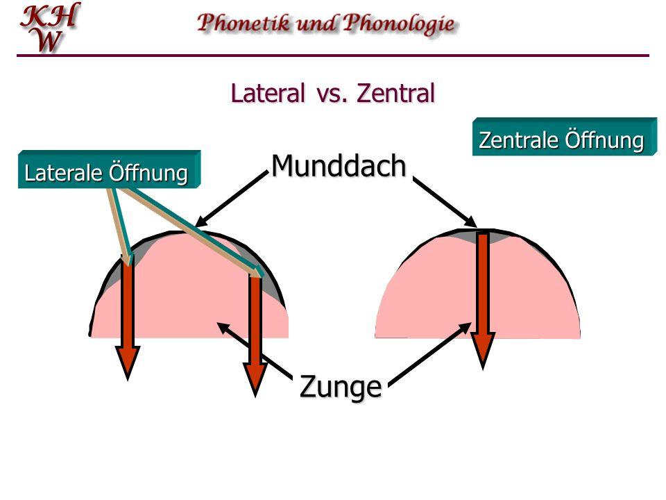 Lateral vs. Zentral Bei lingualen Lauten, d.h.