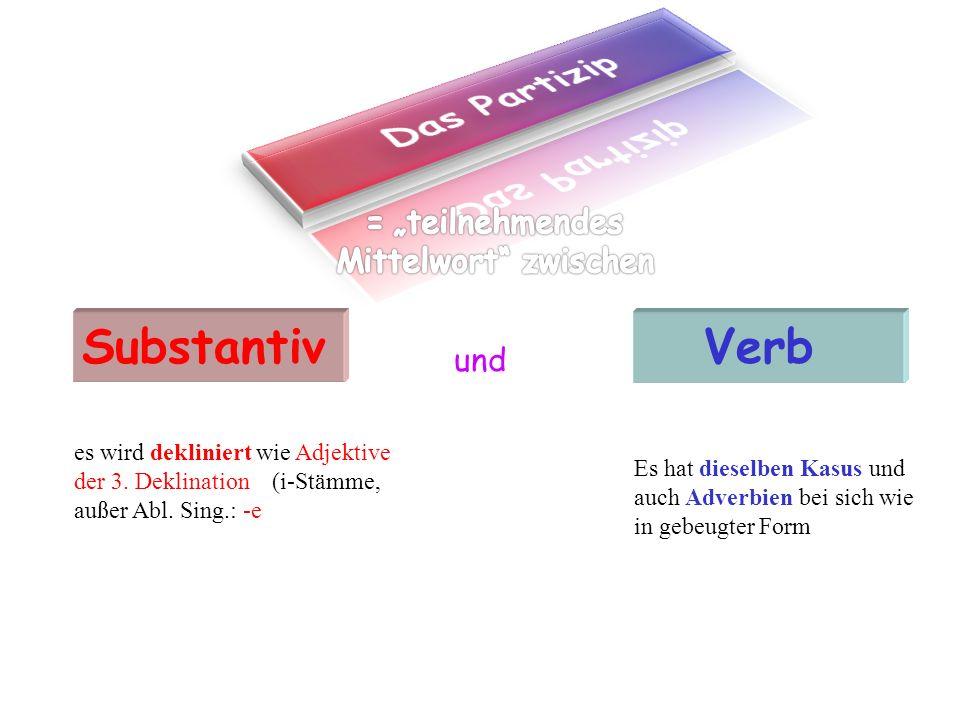 Substantiv Verb und es wird dekliniert wie Adjektive der 3.