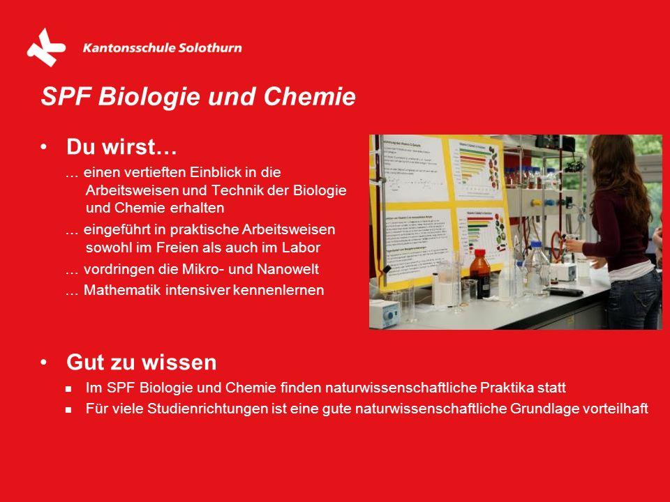 Du wirst… … einen vertieften Einblick in die Arbeitsweisen und Technik der Biologie und Chemie erhalten … eingeführt in praktische Arbeitsweisen sowoh