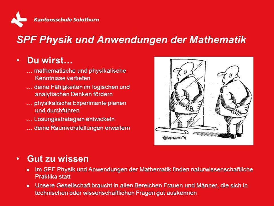 Du wirst… … mathematische und physikalische Kenntnisse vertiefen … deine Fähigkeiten im logischen und analytischen Denken fördern … physikalische Expe