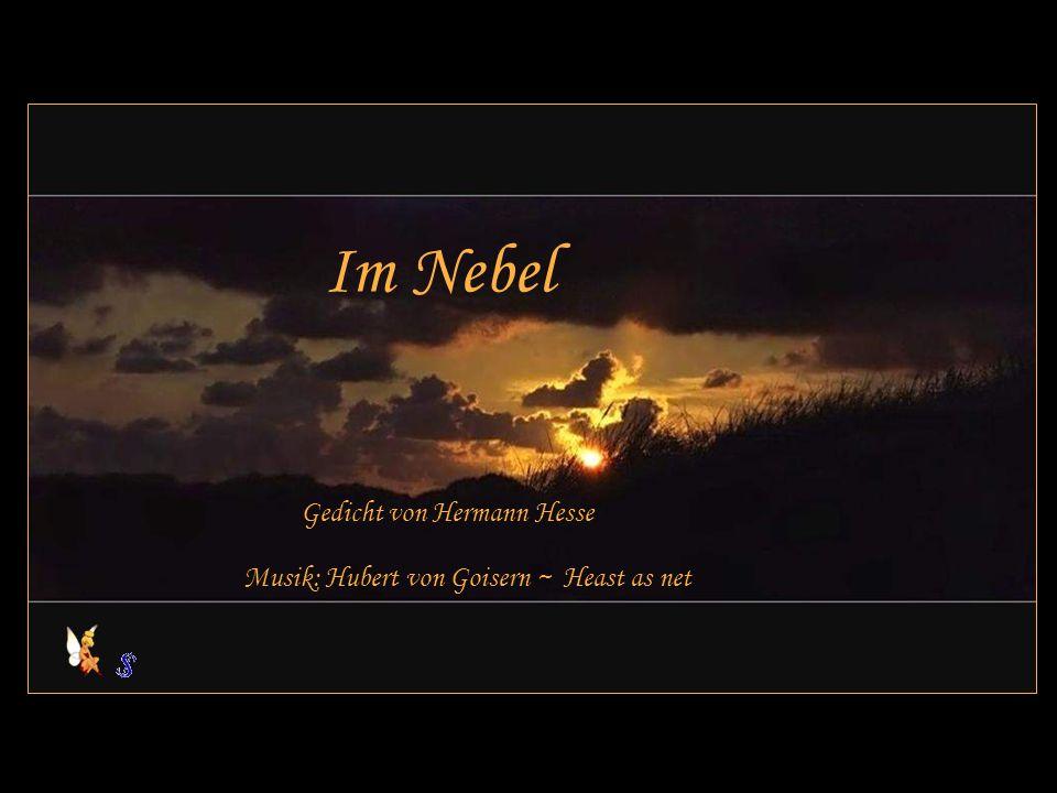 Im Nebel Gedicht von Hermann Hesse Musik: Hubert von Goisern ~ Heast as net