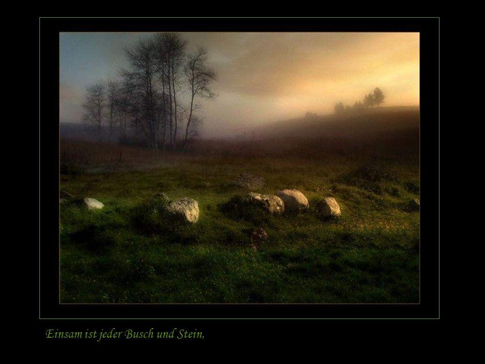 Einsam ist jeder Busch und Stein,