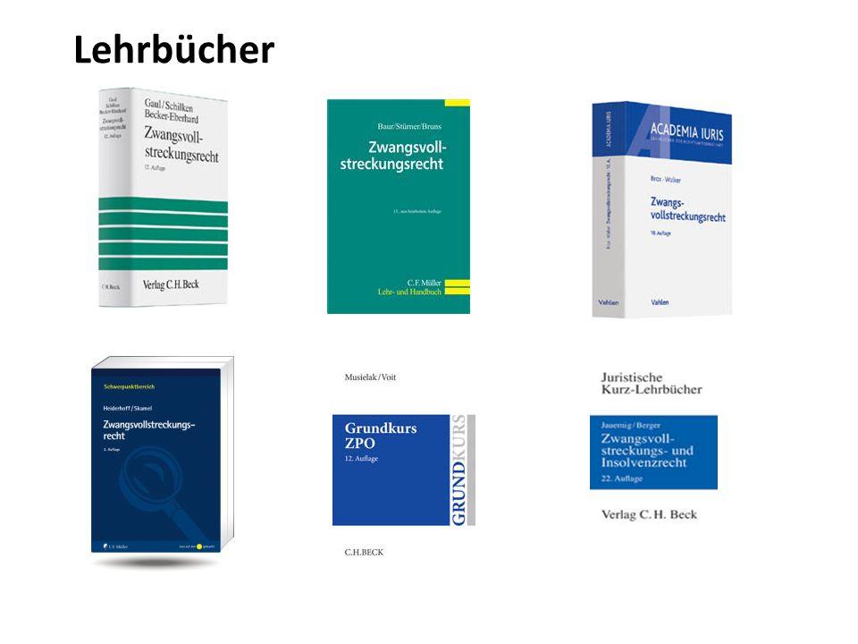 Verfassungsrechtlicher Rahmen der Zwangsvollstreckung Grundrechtseingriff durch Zwangsvollstreckung – Art.