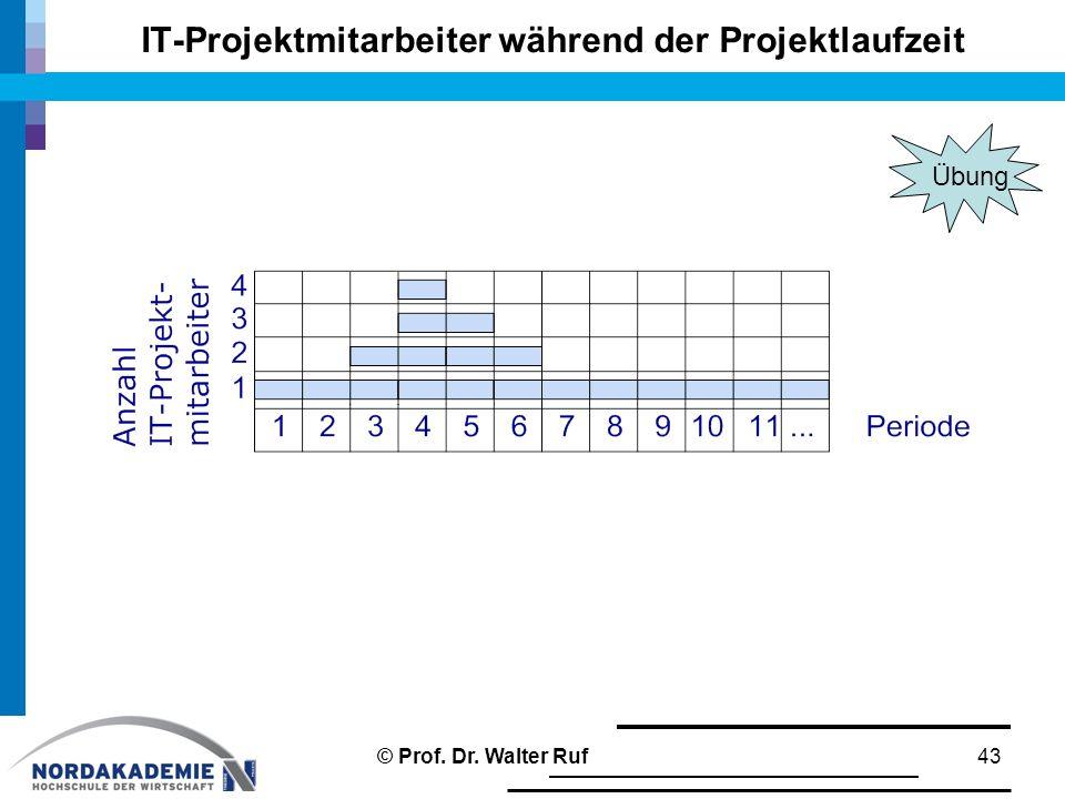 IT-Projektmitarbeiter während der Projektlaufzeit 43© Prof. Dr. Walter Ruf Übung