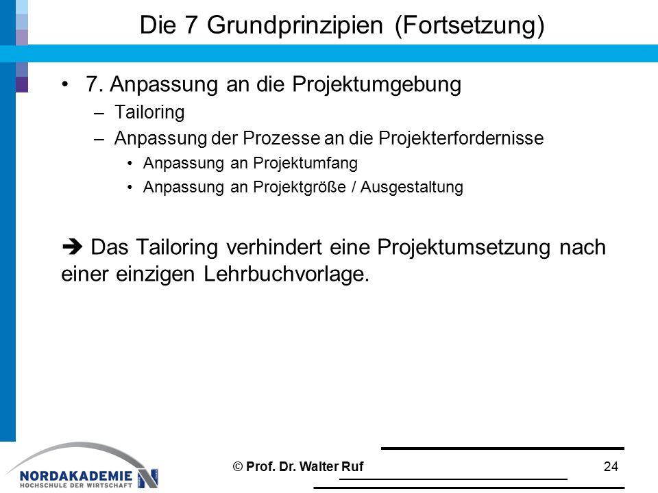 Die 7 Grundprinzipien (Fortsetzung) 7. Anpassung an die Projektumgebung –Tailoring –Anpassung der Prozesse an die Projekterfordernisse Anpassung an Pr