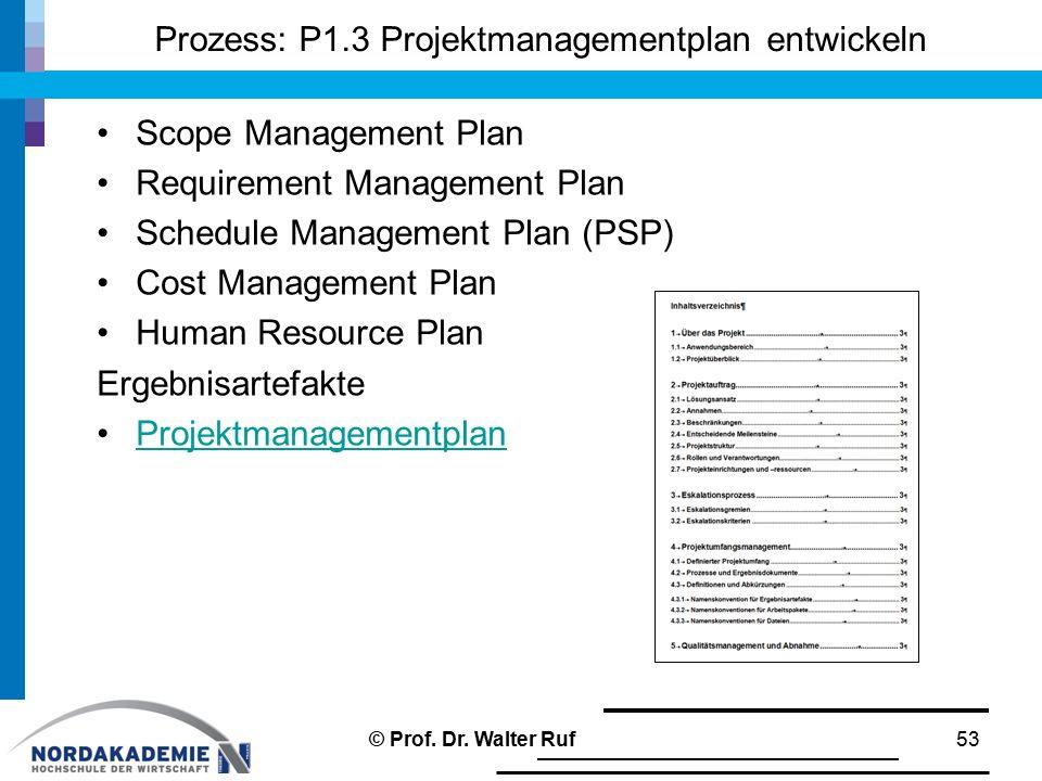 Prozess: P1.3 Projektmanagementplan entwickeln Scope Management Plan Requirement Management Plan Schedule Management Plan (PSP) Cost Management Plan H