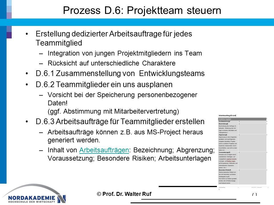 Prozess D.6: Projektteam steuern Erstellung dedizierter Arbeitsauftrage für jedes Teammitglied –Integration von jungen Projektmitgliedern ins Team –Rü