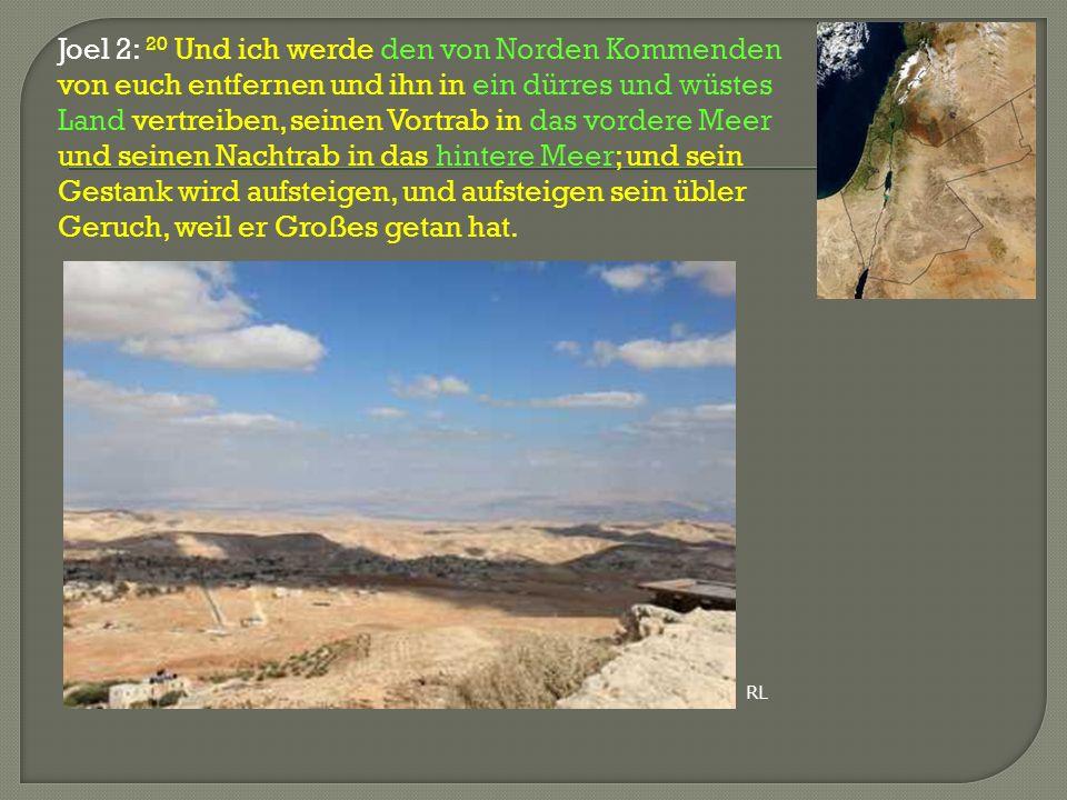 Joel 2: 20 Und ich werde den von Norden Kommenden von euch entfernen und ihn in ein dürres und wüstes Land vertreiben, seinen Vortrab in das vordere M