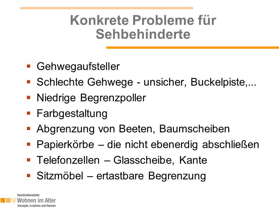 Konkrete Probleme für Sehbehinderte  Gehwegaufsteller  Schlechte Gehwege - unsicher, Buckelpiste,...