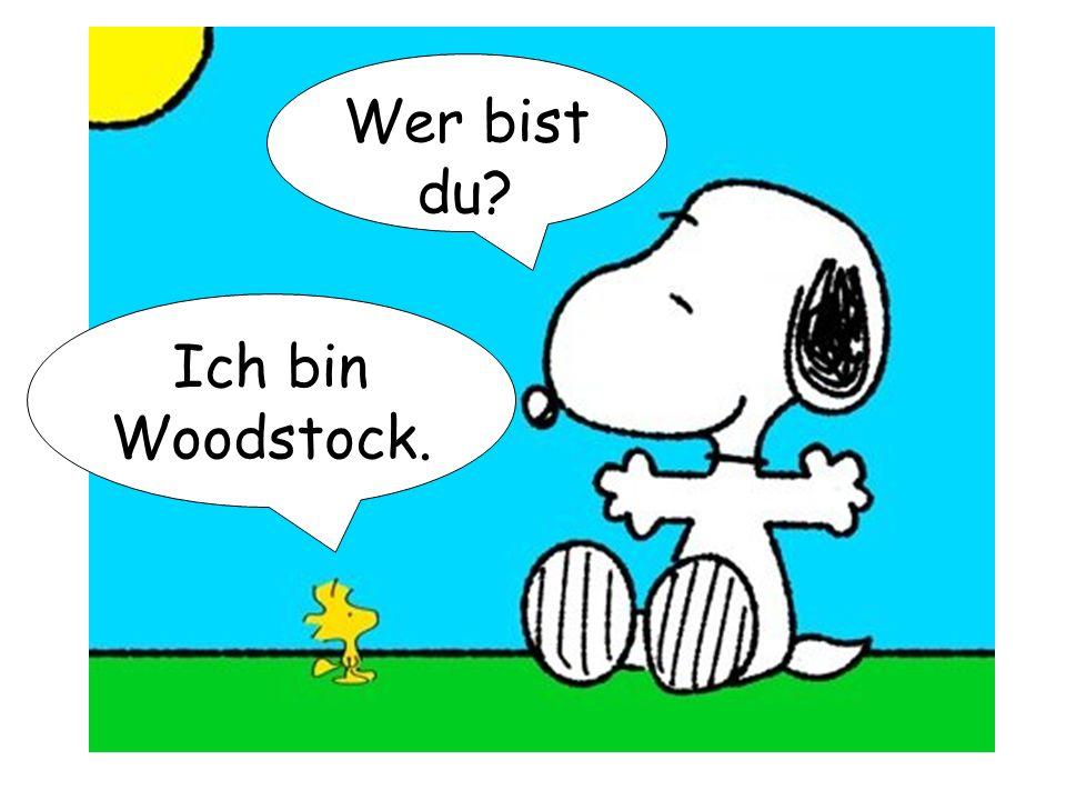Wer bist du? Ich bin Woodstock.